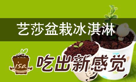 艺莎盆栽冰淇淋