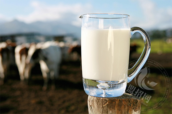 爱牧客鲜奶