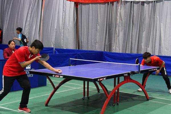 济南梦东方乒乓球多少钱