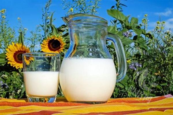 普泽老酸奶