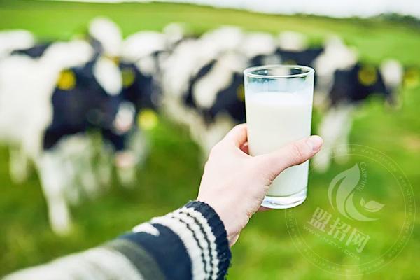 天天鲜奶吧